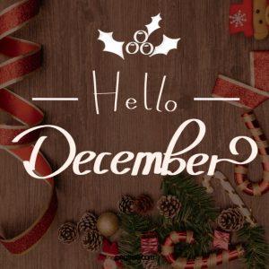 December Newsletter!