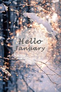 January Newsletter!